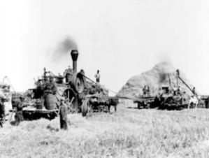 pic-farming