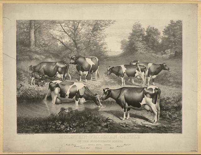 1888-brookbankherdlibraryofcongress-02333r-jpg-jpeg-image-640-c397-494-pixels