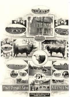 202-RossLetter-1904-MtProspectFarm
